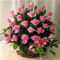 Flowers Basket with 51 purple roses